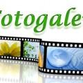 logo---fotogalerie_eyecatcher